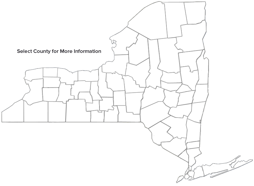 NYS GIS Clearinghouse - Nys map